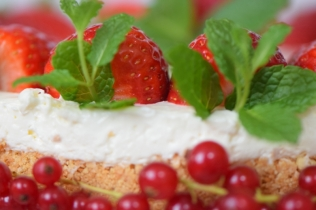 Erdbeer-Käsekuchen mit Ribisel 2