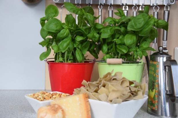 Fast ligurisches Pesto (1)