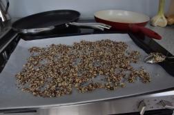Heilbutt-Ceviche mit Stangensellerie-Passionsfrucht-Sauce (3)