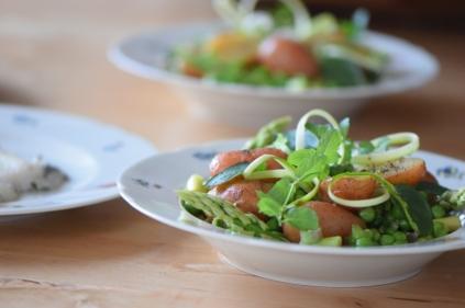 Maischolle mit Kartoffel-Erbsen-Salat (12)