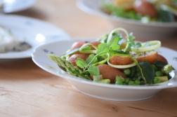 Maischolle mit Kartoffel-Erbsen-Salat (14)