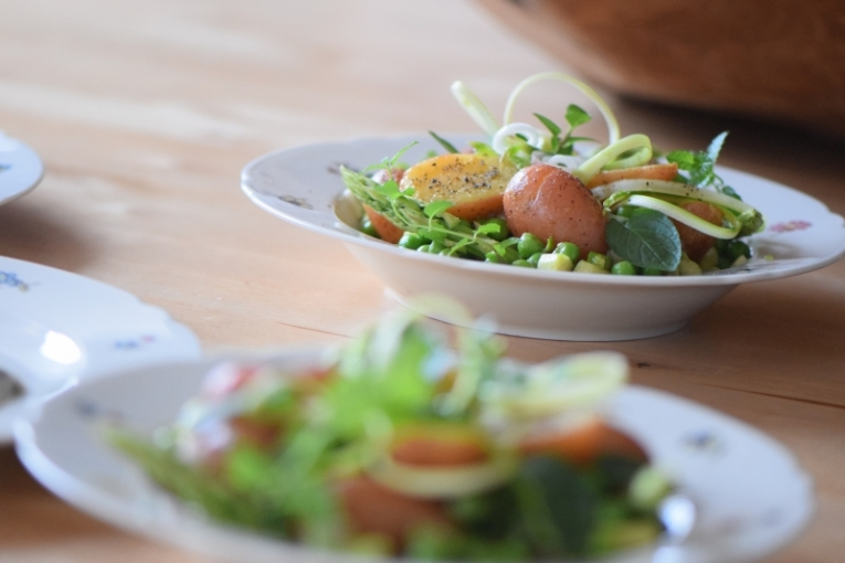Maischolle mit Kartoffel-Erbsen-Salat (15)