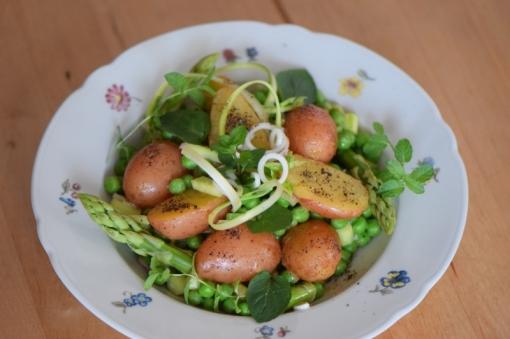 Maischolle mit Kartoffel-Erbsen-Salat (9)
