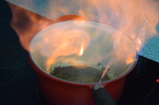 Rindsfilet mit flambierter Pfeffersauce (12)
