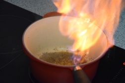 Rindsfilet mit flambierter Pfeffersauce (8)