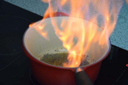 Rindsfilet mit flambierter Pfeffersauce (9)