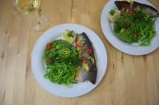 Saibling auf Spargel-Spinat-Kartoffelpüree (5)