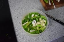 Bohnensalat mit Fenchel und Orangen (4)