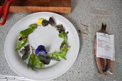 Matjes-Filet mit Kräutersalat (1)