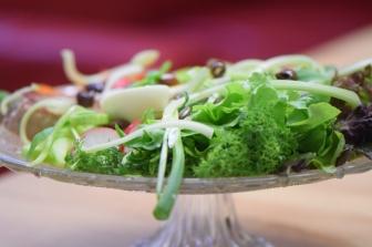 Nizza-Salat (15)