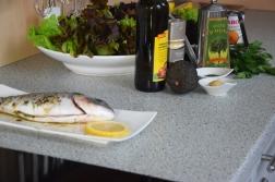 Dorade mit Salat (3)