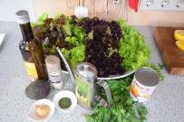 Dorade mit Salat (4)