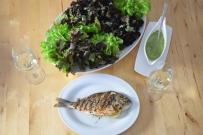 Dorade mit Salat (5)