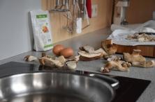 Gebackene Pilze mit Aioli (2)