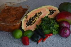 Scharfe Hähnchenkeulen mit Papaya-Mango-Salsa (3)