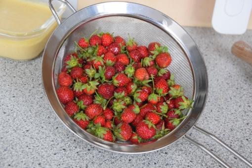 Erdbeer-Tartelettes (1)
