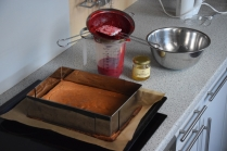 Ribiselkuchen ohne Zucker (2)