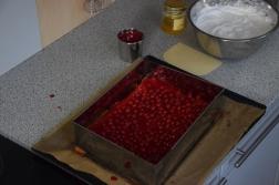 Ribiselkuchen ohne Zucker (4)