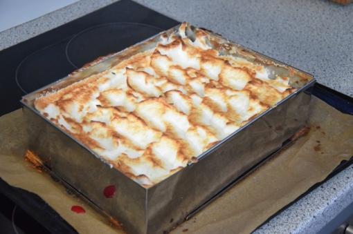 Ribiselkuchen ohne Zucker (6)