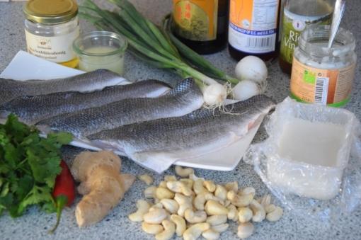 Wolfsbarsch mit Kokos-Salat (1)