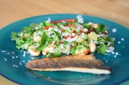Wolfsbarsch mit Kokos-Salat (5)