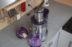 Purple Duck (3)