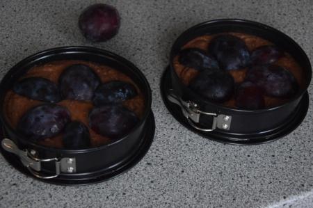 schoko-zwetschkenkuchen-1