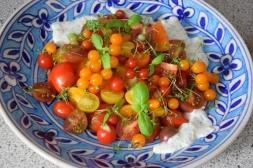 schweinerne-tomatenvielfalt-4