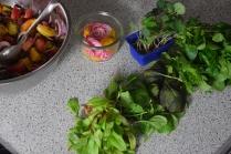ringelbete-linsen-salat-3