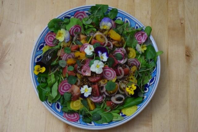ringelbete-linsen-salat-4