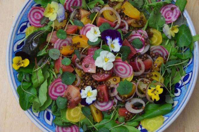 ringelbete-linsen-salat-5