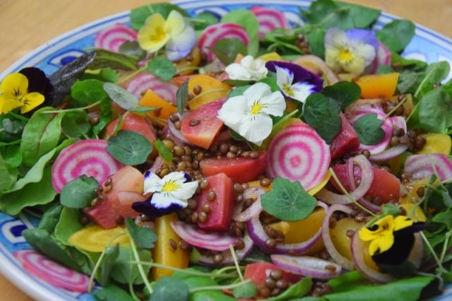 ringelbete-linsen-salat-6