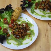 Eierschwammerlsalat mit Pesto
