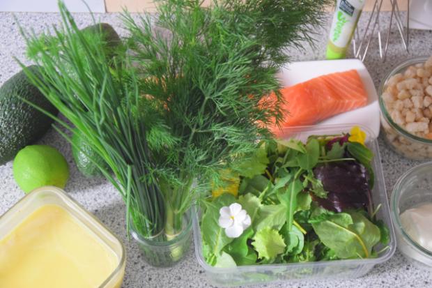 Salat mit Avocadocreme und Lachs (1)