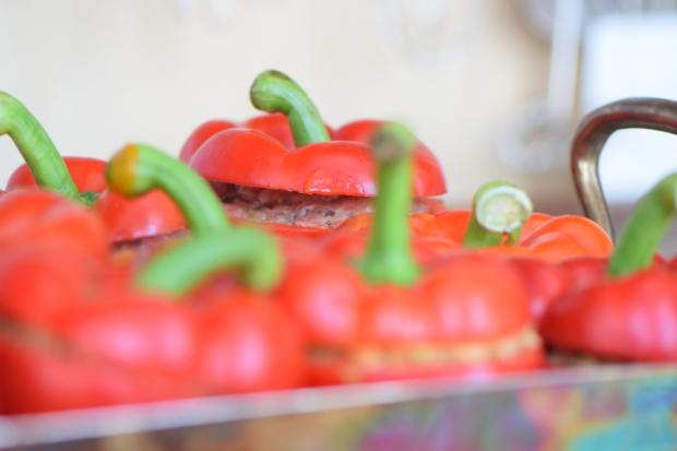 Holländische Paprika (11)