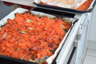 Holländische Paprika (3)