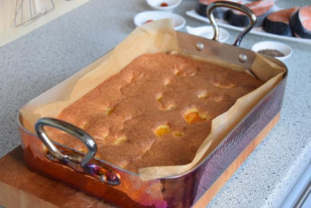 Zuckerfreier Marillen-Sandkuchen (4)