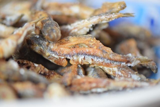 Frittierte Sardinen (7)