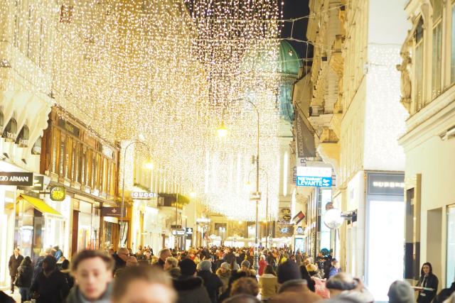Frohe Weihnacht aus Wien (17)