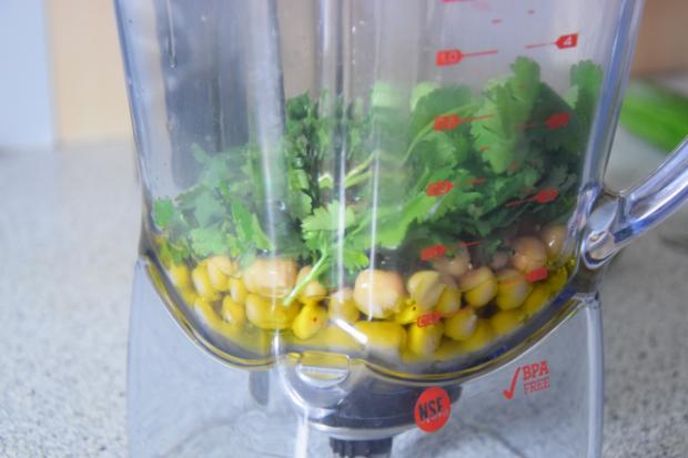 Bachsaibling mit Korianderducca und Limettengurken (3)