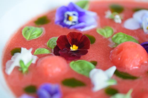 Kalte Wassermelonensuppe (7)