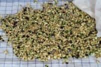 Für die Kruste: Aubergine und Zucchini in feine Würfel geschnitten.