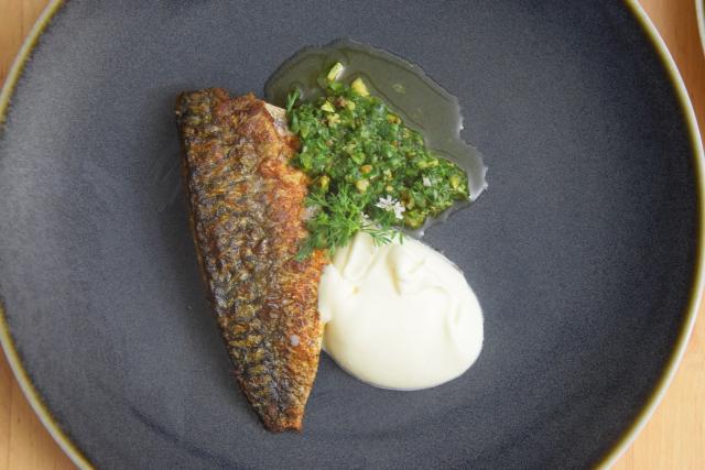 Makrele mit Ingwercreme und Pistazien-Kardamomsalsa (6)