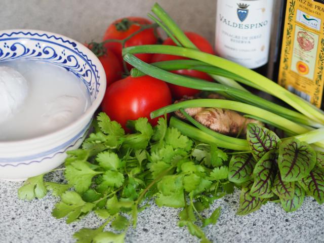 Tomaten, Frühlingszwiebel, Ingwer (1).png