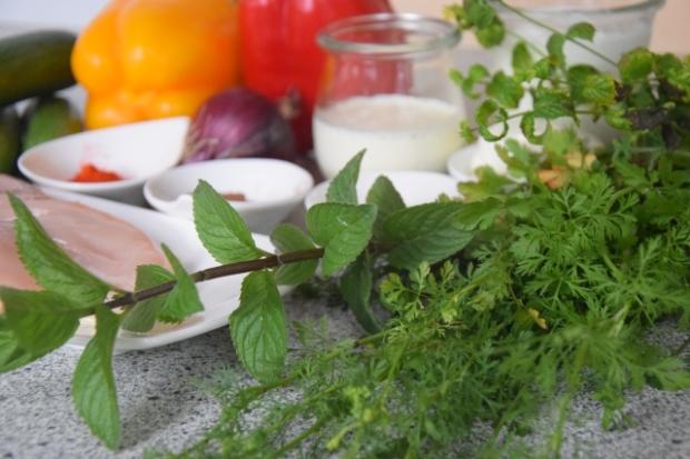 Hühnerspieße mit Koriander Dip, Paprika&Gurken (1)