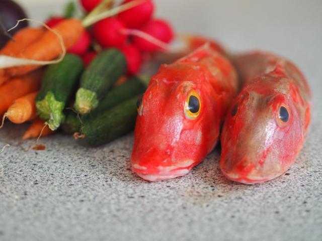 Knurrhahn mit Mini-Gemüse