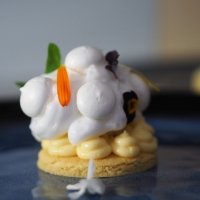 Zitronentörtchen im Singapur-Stil